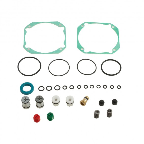 Seal Kit for 422 - FAAC 2172.1